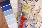 Color paint and wallpaper choice