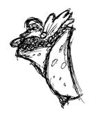 Sketchy burritos