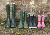 Wellington boots in row
