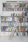 ladder and shelves of books