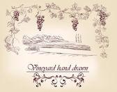 Kézzel rajzolt címke szőlőültetvények