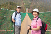 Happy asian senior couple walking on the bridge in the nature pa