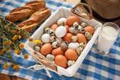 Křepelčí vejce, výživnější než slepičí vejce