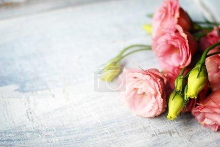 木制背景上的花