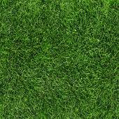 Trama senza giunte di erba verde. senza soluzione di continuità in solo la dimensione orizzontale
