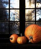 Different sized pumpkins in window