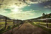 Krásný výhled na západ slunce v poli na venkovské cestě