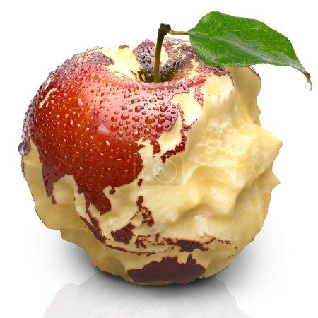 Постер, плакат: Apple with carved continents Asia, холст на подрамнике