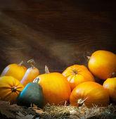 Umění podzimní dýňová díkůvzdání pozadí