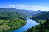 řeka Ebro procházející miravet, Španělsko