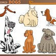 ������, ������: Dog breeds cartoon set