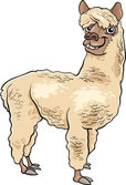 Cartoon Illustration of Funny Alpaca Farm Animal