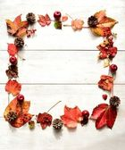červená břečťan list, šiška a apple.frame