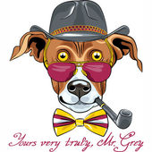Vector funny cartoon hipster Greyhound Dog breed