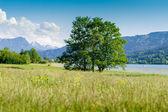 Mountains behind a summer landscape