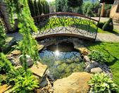 -giardinaggio