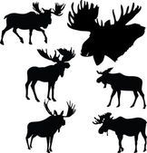 Moose silhouettes collection vector illustration