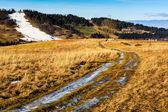 Polní cesta přes pole