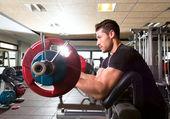 Biceps preacher bench arm curl workout man at gym