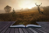 Red deer stag in landscape coming out of pages in book creative