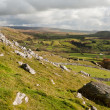 Постер, плакат: View from Norber Erratics down Wharfe Dale in Yorkshire Dales Na