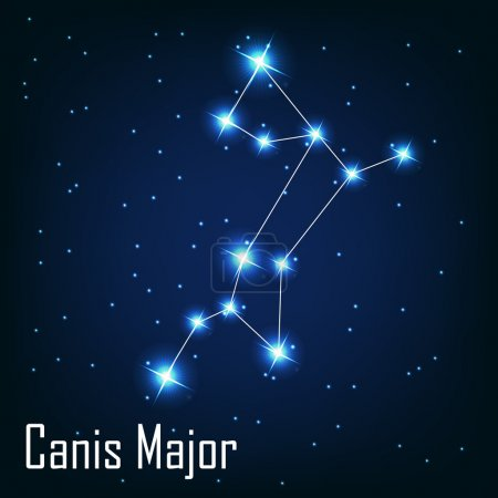 Постер, плакат: The constellation Canis Major star in the night sky , холст на подрамнике