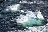 Antarktida - kousky plovoucího ledu - globální oteplování