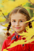 Autumn fun - lovely girl has a fun in autumn leaves