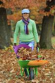 Autumn - woman raking autumn leaves in the garden