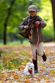 Autumn walk with puppy - fashion girl with maltese puppy in autumn park