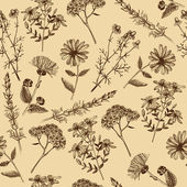 Seamless vintage pattern with ink hand drawn medicinal herbs and plants