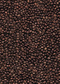Coffee beans seamless pattern background EPS 10 vector