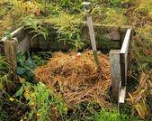 Kompostu