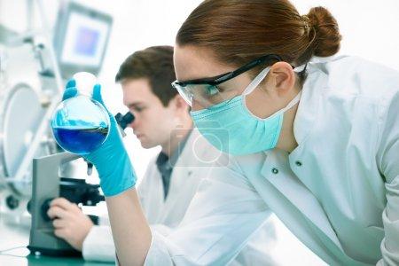 Постер, плакат: Scientists working at the laboratory, холст на подрамнике