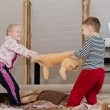 Постер, плакат: Cute brother and sister having a tug of war
