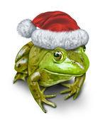 Rana di vacanza come un anfibio verde che indossa un cappello di Natale come festivo simbolo della natura e conservazione durante la stagione del regalo dando su sfondo bianco