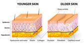 Stárnutí kůže