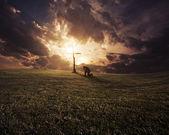 Západ slunce na kolenou