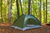 Touristic tent in a autumn forest