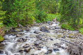 Tatra Mountains - a stream of pure water