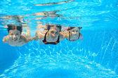 šťastná rodina plavat pod vodou v bazénu