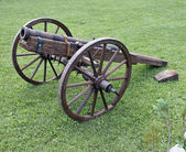 Historic wooden cannon