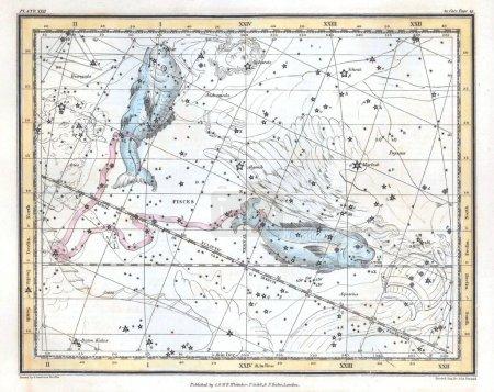 Постер, плакат: Constellation, холст на подрамнике