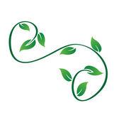 Green swirly leaves logo vector