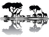 Africa wildlife skyline