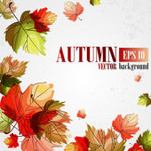 Autumn background Vector illustration Eps 10