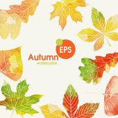 Autumn Background With Leaves Vector Illustration Eps 10