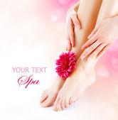 Női láb és a kéz. Manikűr és pedikűr koncepció