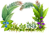 Illustration of plants and flowers on a white background