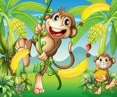 Dvě opice v blízkosti rostliny banánu